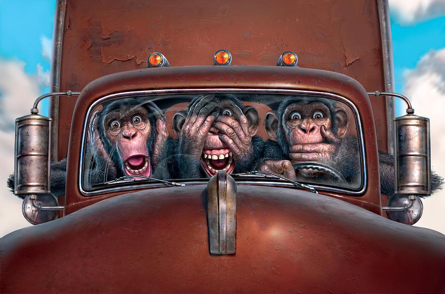 Monkeys Digital Art - Hear No Evil See No Evil Speak No Evil by Mark Fredrickson
