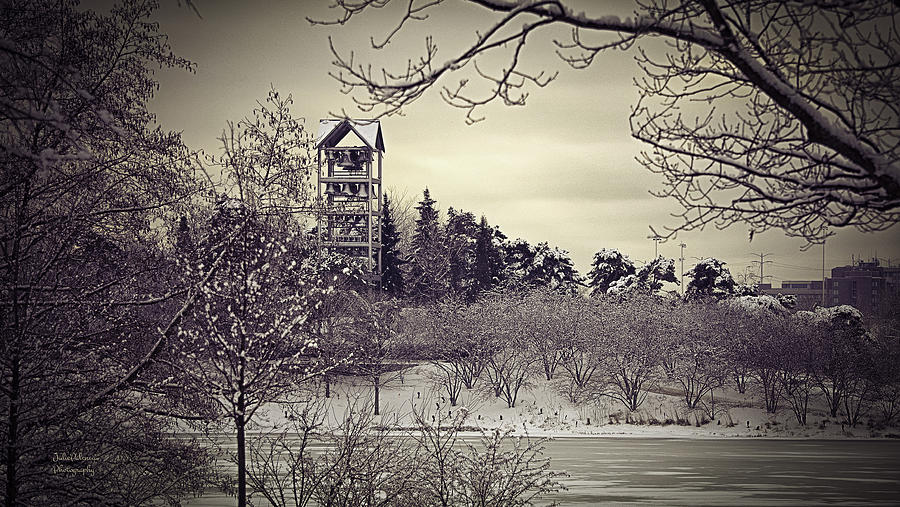 Bell Tower Photograph - Hear The Carillon Bells by Julie Palencia