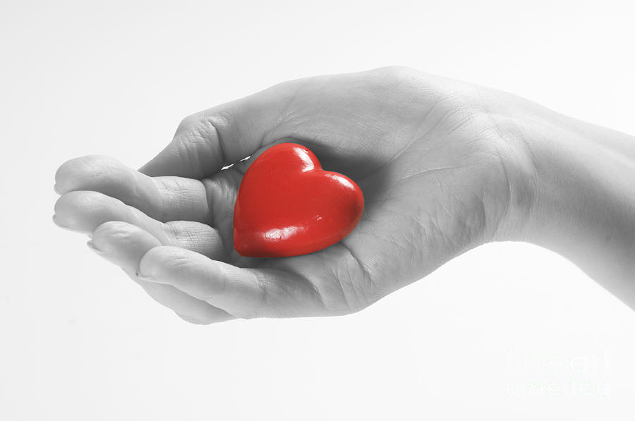Heart In Hand Photograph By Michal Bednarek