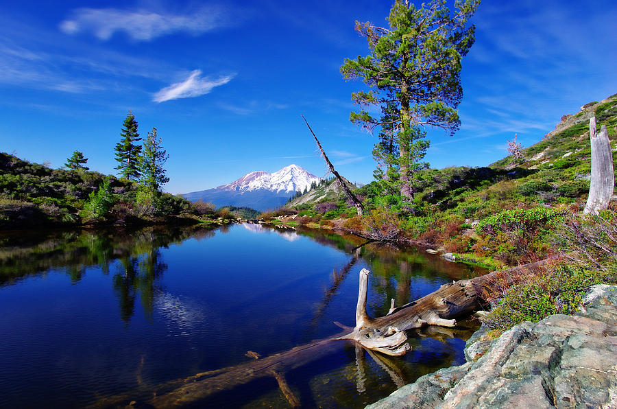 Blue Sky Photograph - Heart Lake And Mt Shasta Reflection by Scott McGuire