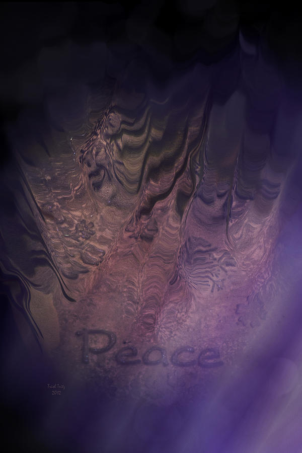 Peace Photograph - Heart Of Peace by Trish Tritz