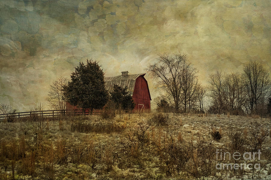 Heart Photograph - Heart Of The Farm by Terry Rowe