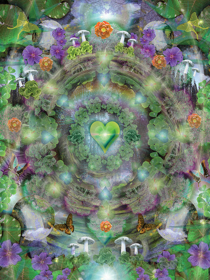 Alixandra Mullins Photograph - Heart Of The Forest by Alixandra Mullins