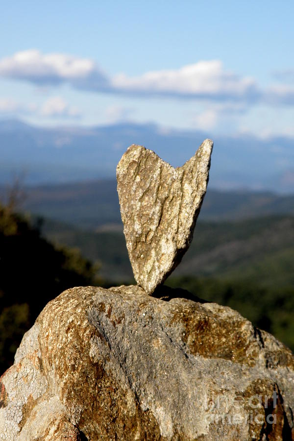 Heart Photograph - Heart On A Journey by Lainie Wrightson