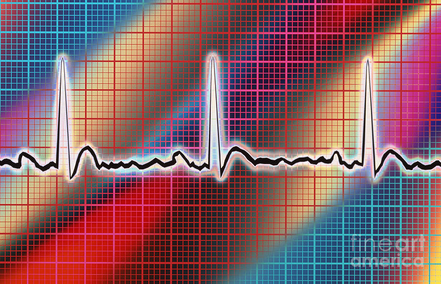 Circulatory System Photograph - Heart Trace by Mike Agliolo