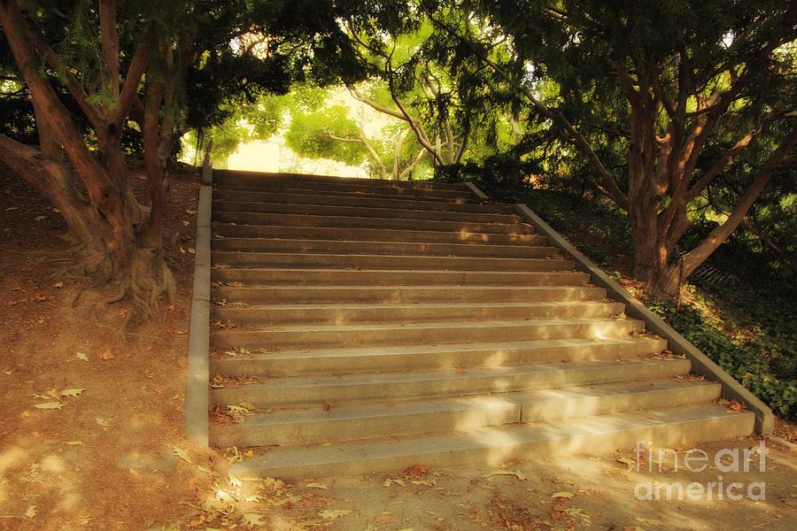 Stairway Photograph - Heavenly Stairway by Madeline Ellis