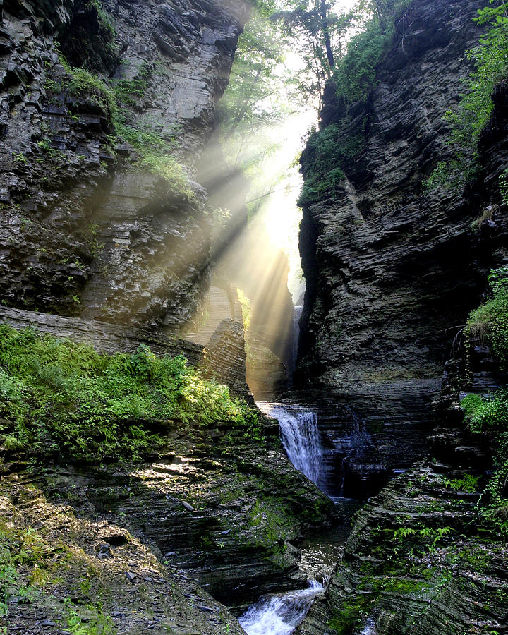 Glen Photograph - Heavens Light In Watkins Glen by Gene Walls