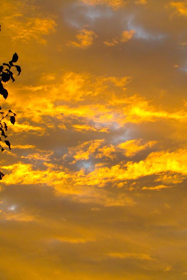 Sky Photograph - Heavens Sky by Andrea Dale