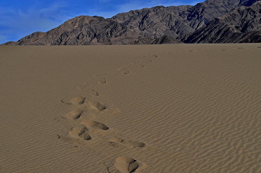 Sand Photograph - Heavy Feet by See My  Photos