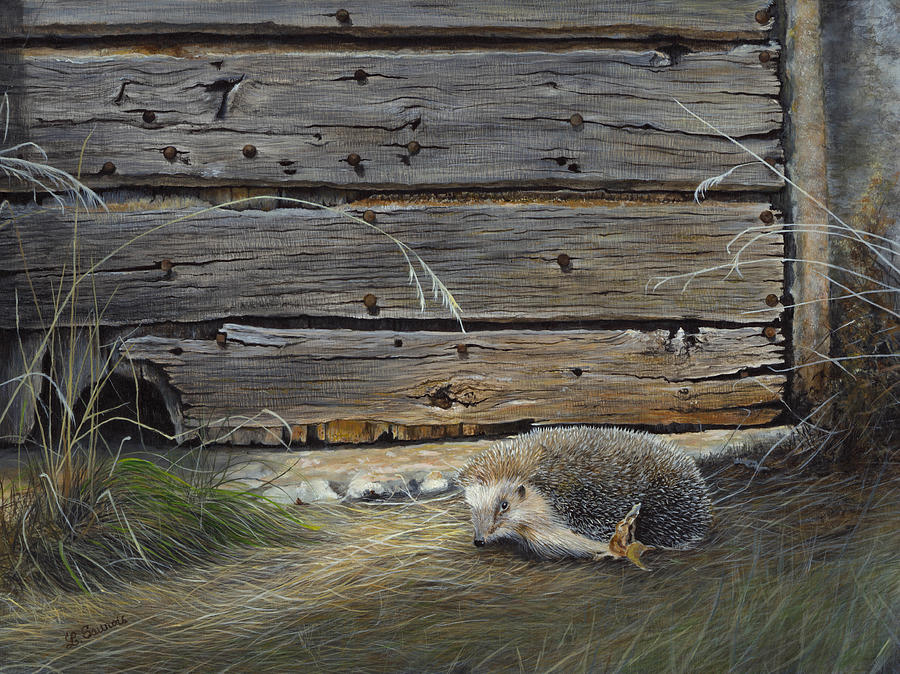 Hedgehog Front Of Old Wooden Door Painting By Laurence Saunois
