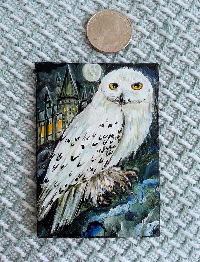 Hedwig by Steve Ozment