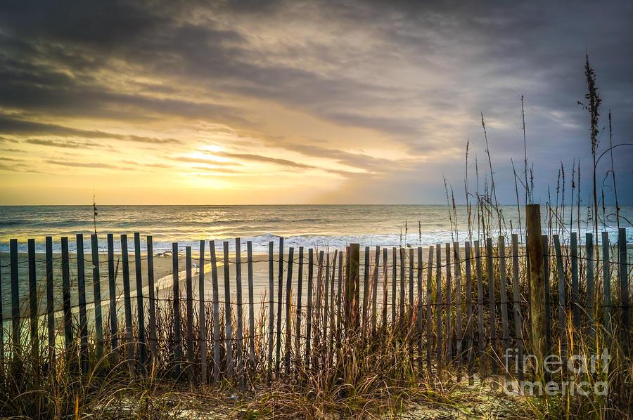 Beach Life Photograph - Held Back by Matthew Trudeau