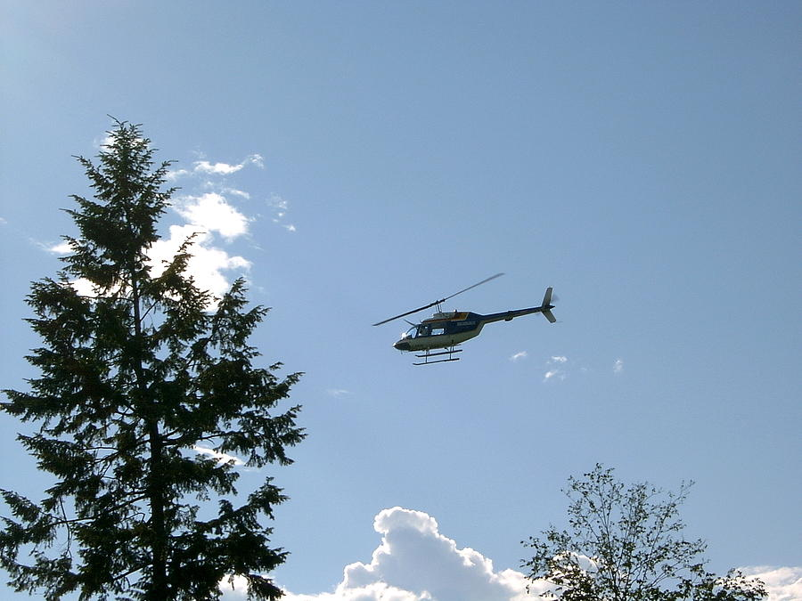 Helicopter Photograph - Helicopter Misses Tree by Mavis Reid Nugent