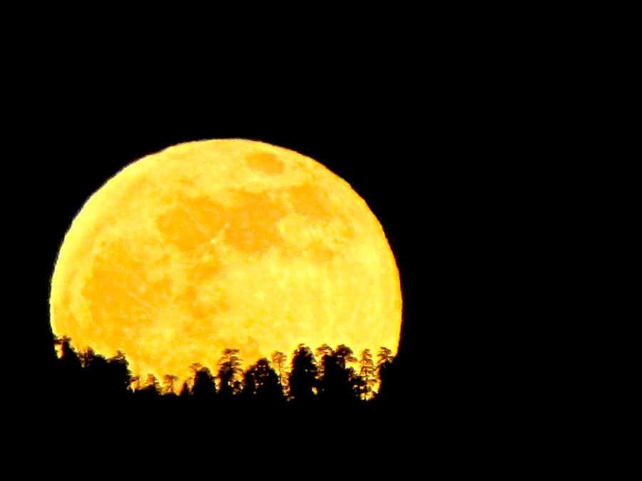 Moon Photograph - Hello Moon by Feva  Fotos