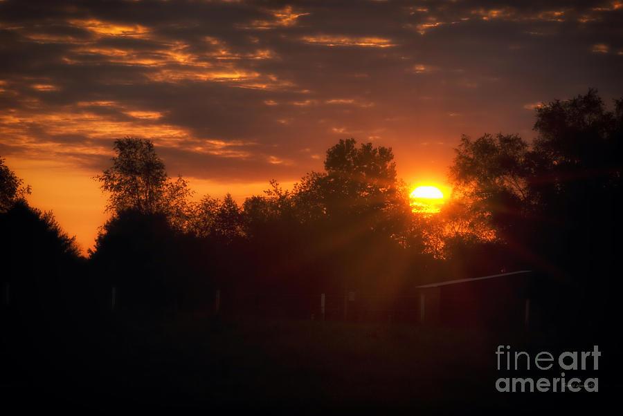 Sun Photograph - Hello Sunshine by Thomas Woolworth