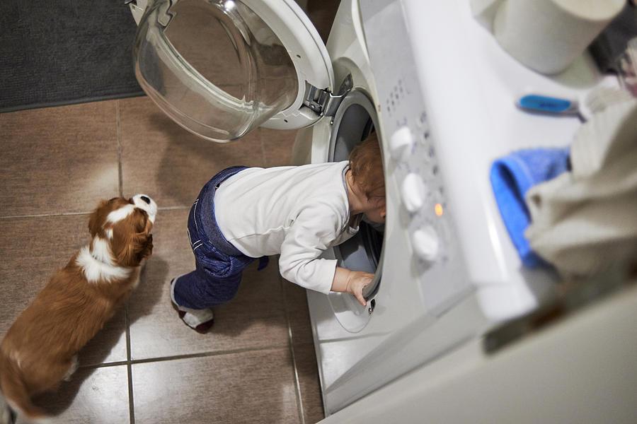 Help Me Fix This Washing Machine Photograph by DaniloAndjus