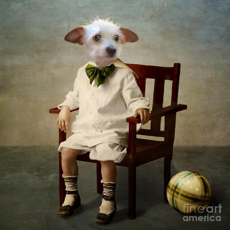 Dog Photograph - Henri by Martine Roch