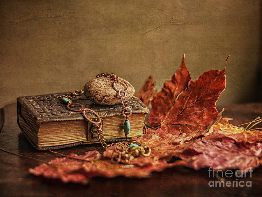 Still Life Photograph - Her Old Diary by Terry Rowe