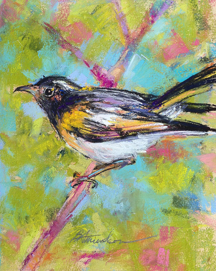 Bird Pastel - Herald Of Spring by Beverly Amundson