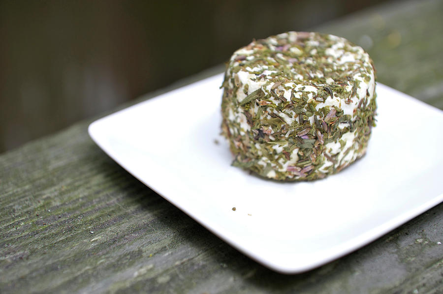 Herb Crusted Goat Cheese Photograph by Hilary Brodey