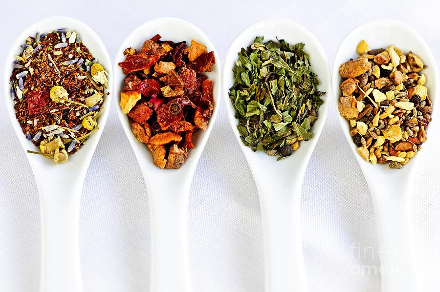 Tea Photograph - Herbal Teas by Elena Elisseeva