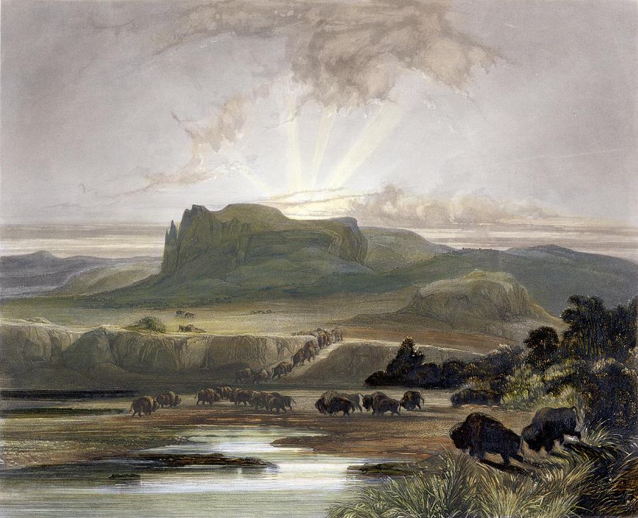 River Drawing - Herd Of Bison On The Upper Missouri by Karl Bodmer