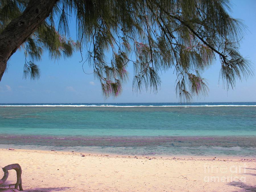 Hermitage - Ile De La Reunion - Reunion Island - Indian Ocean Photograph by Francoise Leandre