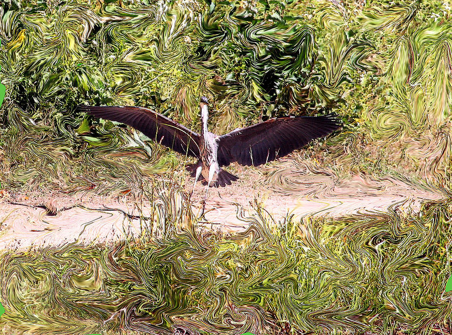 Heron Photograph - Heron Landing by Carolyn Reinhart