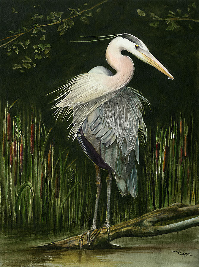 Heron Painting by Terri  Meyer