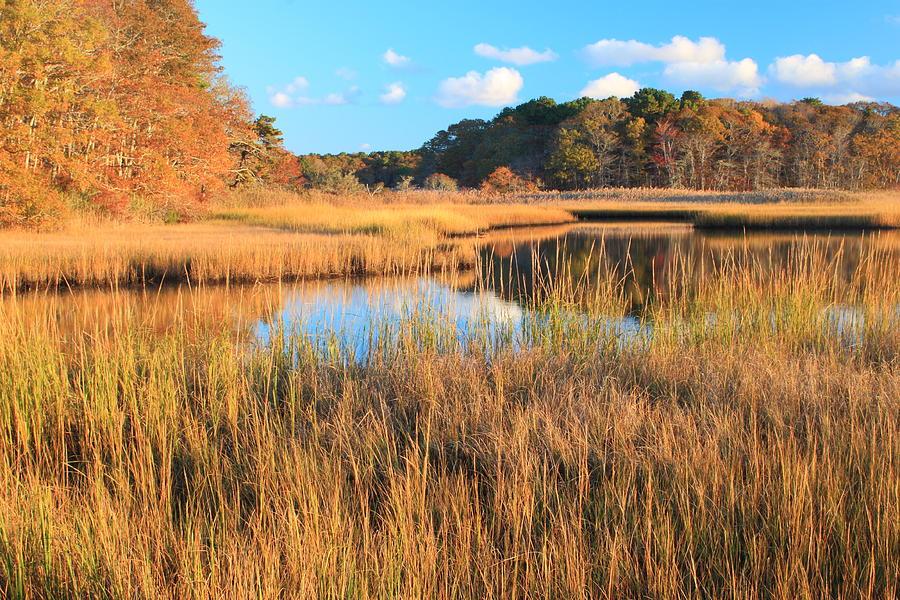 Autumn Photograph - Herring River Cape Cod Marsh Grass Autumn by John Burk