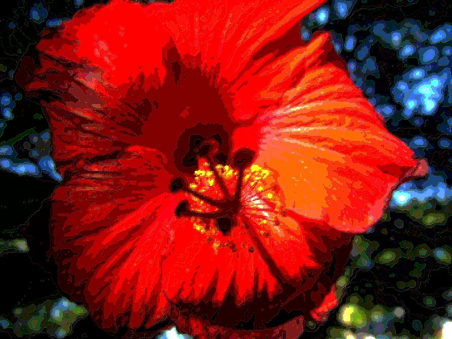 Hibiscus Photograph - Hibiscus 2 by Mark Malitz