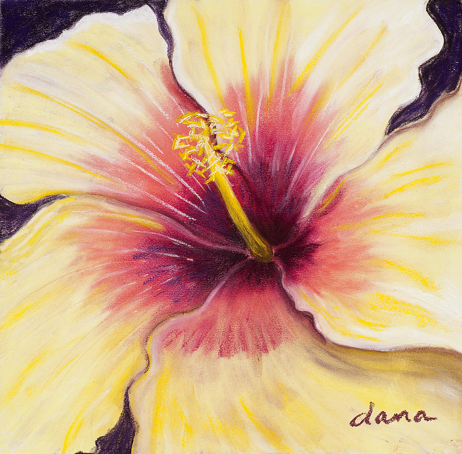 Flower Painting - Hibiscus by Dana Strotheide