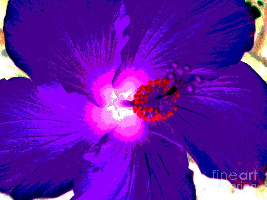 Hibiscus - Flower - Ile De La Reunion - Reunin Island Photograph by Francoise Leandre