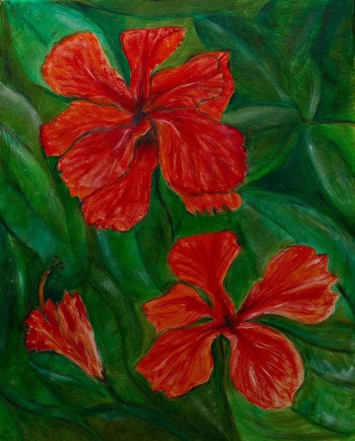 Hibiscus Painting - Hibiscus by Peter Turner