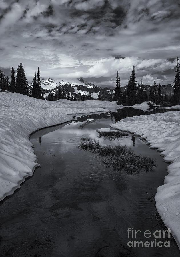 Mt. Rainier Photograph - Hidden Beneath The Clouds by Mike  Dawson