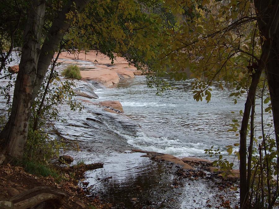 Landscape Photograph - Hidden Brook by Judith Russell-Tooth