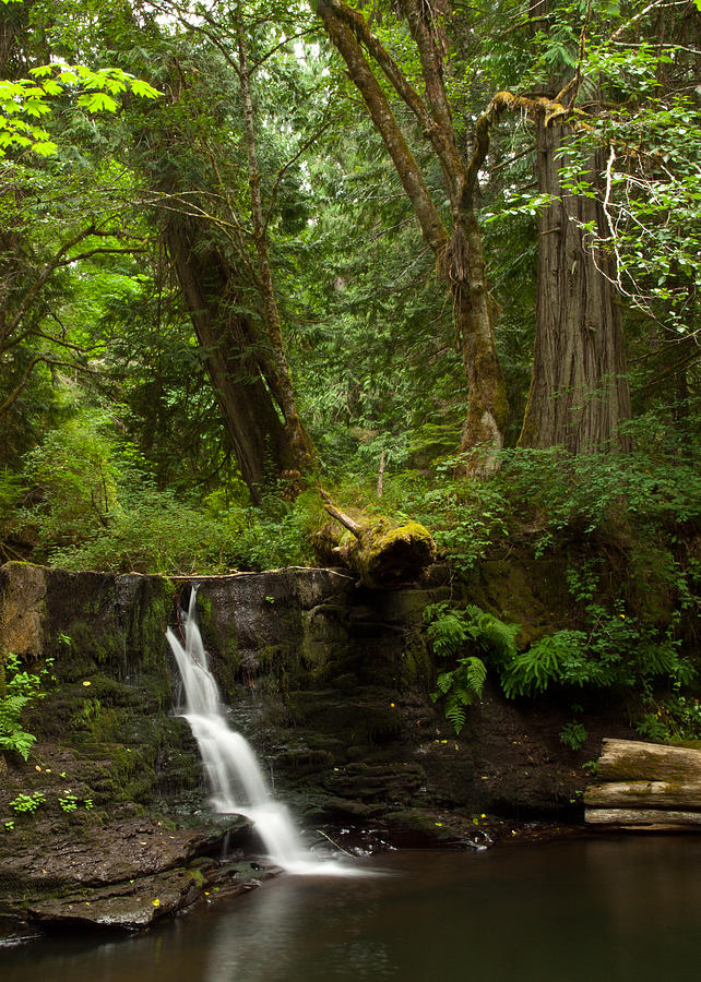 Water Photograph - Hidden Gem by Randy Hall