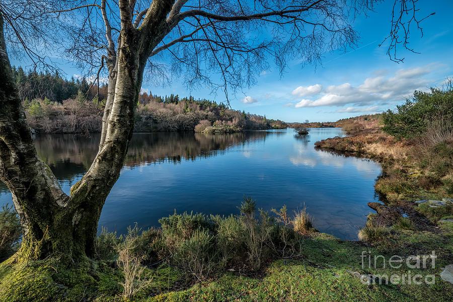 Betws Y Coed Photograph - Hidden Lake by Adrian Evans