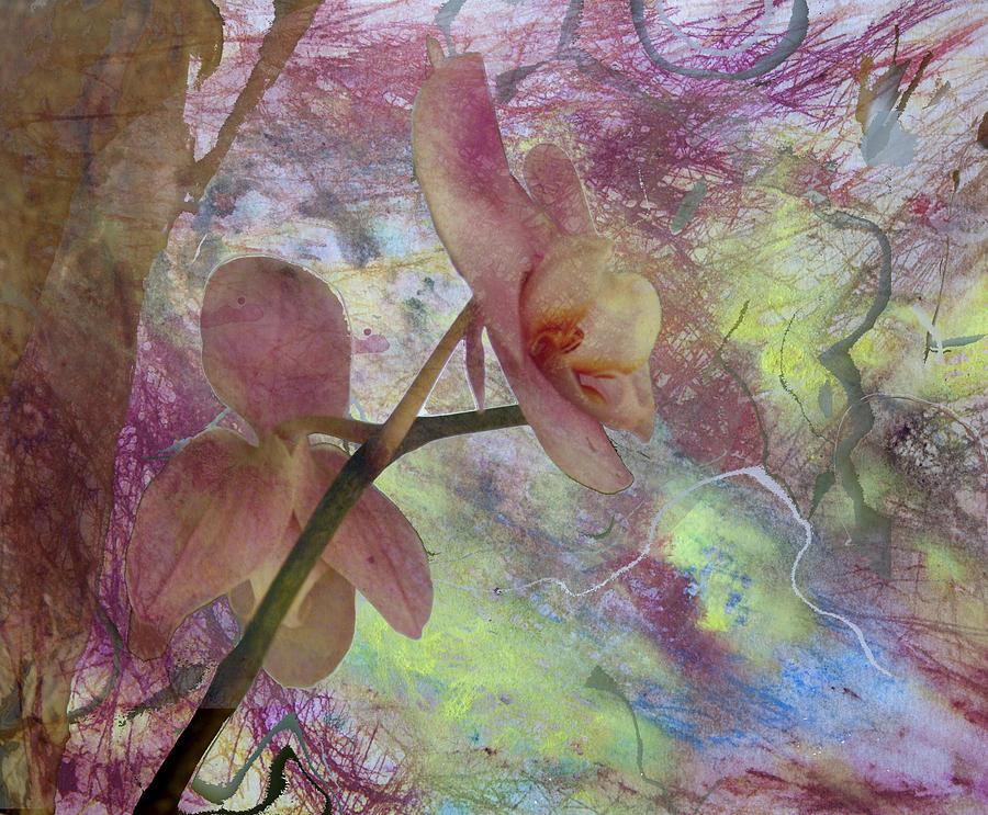 Mixed Media Mixed Media - Hidden Orchid by Donna Walsh