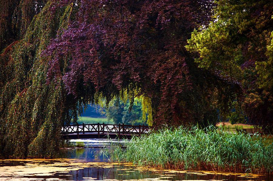 Utrecht Photograph - Hidden Shadow Bridge At The Pond. Park Of The De Haar Castle by Jenny Rainbow