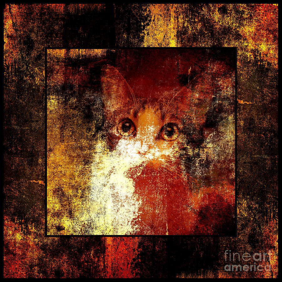 Abstract Photograph - Hidden Square by Andee Design