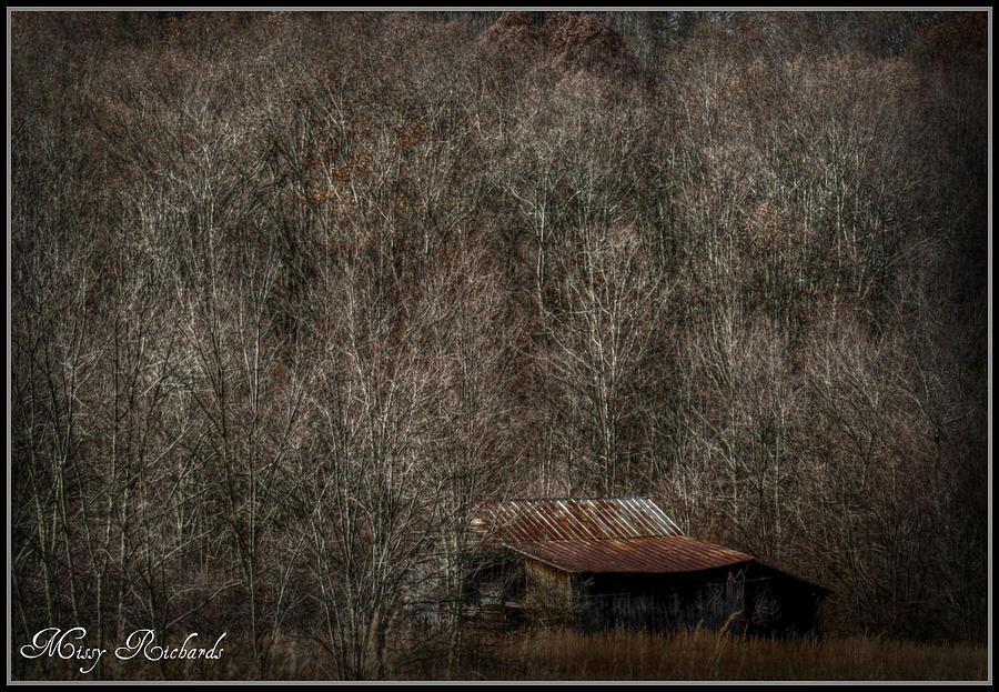 West Virginia Photograph - Hidden Treasure by Missy Richards