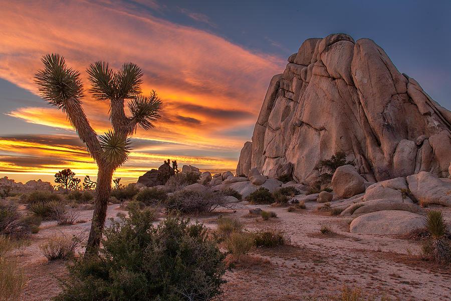 California Photograph - Hidden Valley Rock - Joshua Tree by Peter Tellone