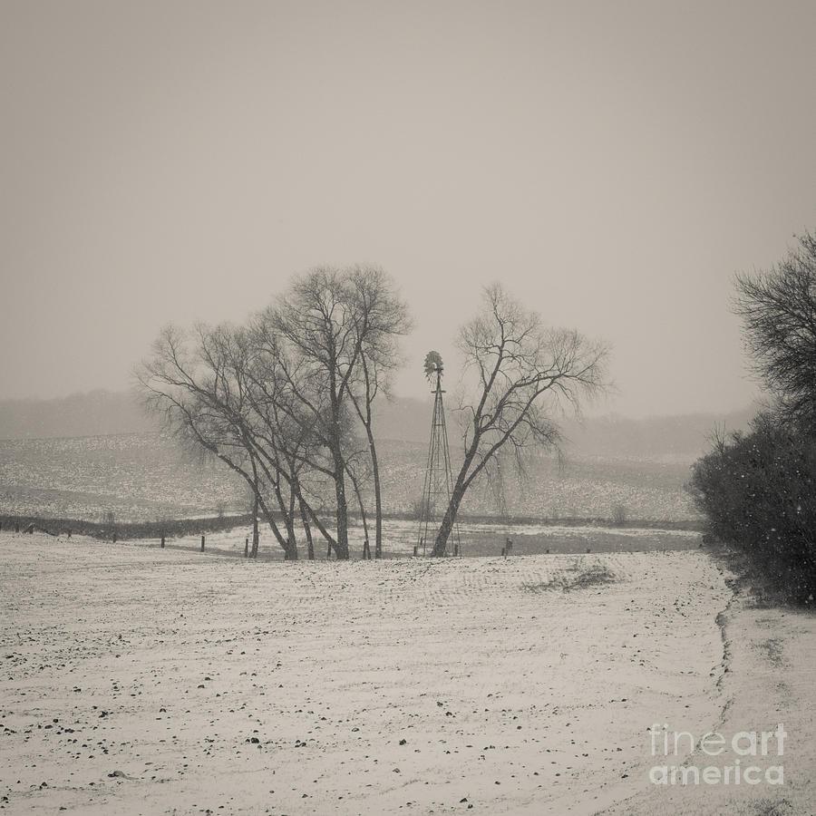 Hidden Windmill by Rural America Scenics