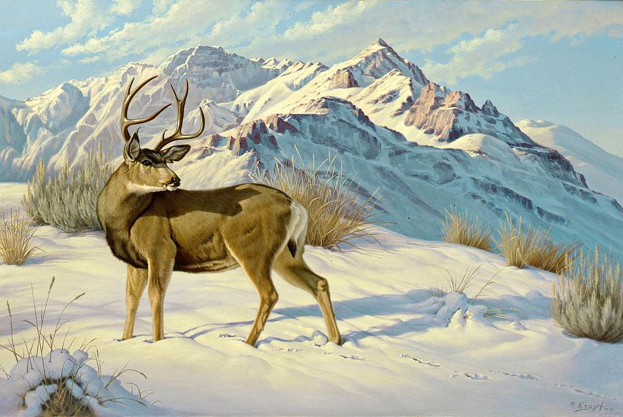 Wildlife Painting - High Country Buck by Paul Krapf