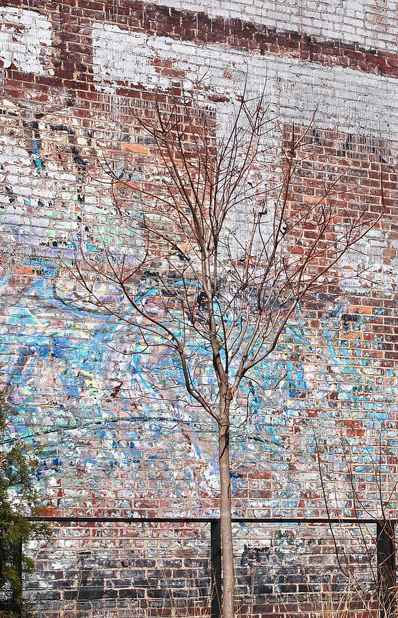 The High Line Photograph - High Line Palimpsest by Rona Black