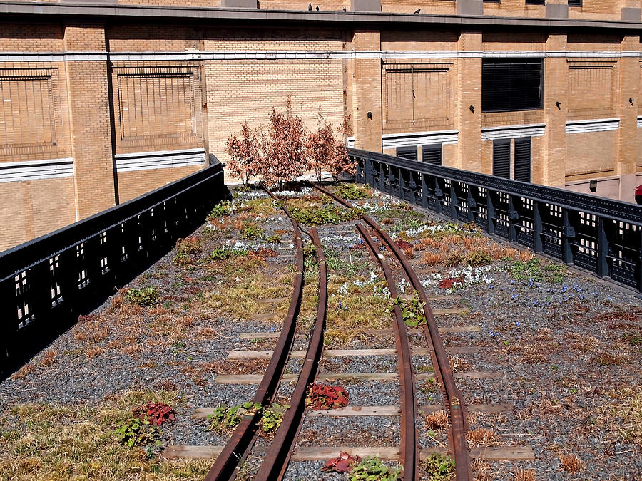 The High Line Photograph - High Line Spur by Rona Black