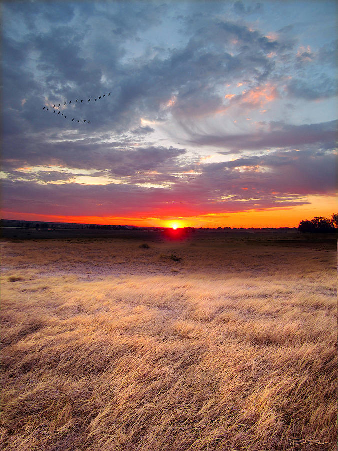 High Plains Photograph - High Plains Sunrise by Ric Soulen