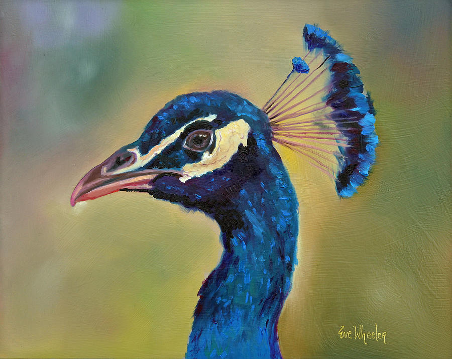 Peacock Painting - High Profile by Eve  Wheeler