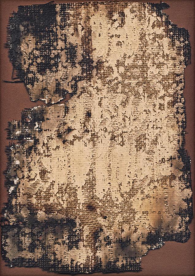 High Resolution Burnt Primed Burlap Photograph by Miroslav Boskov